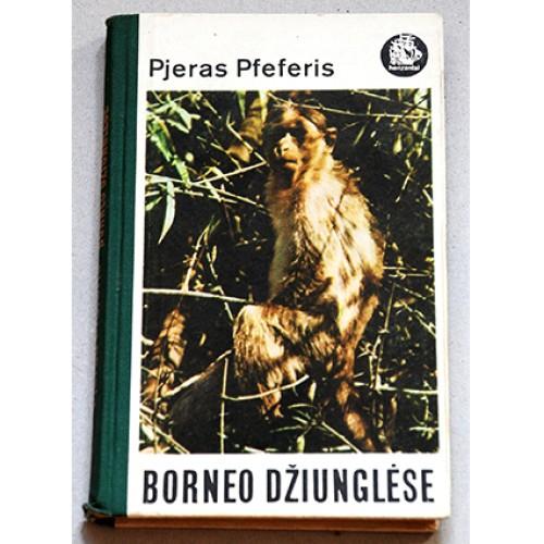 Pfeferis Pjeras - Borneo džiunglėse